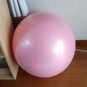★『体幹力を上げるコアトレーニング』・・・木場 克己(著)  ☆ ドローイン