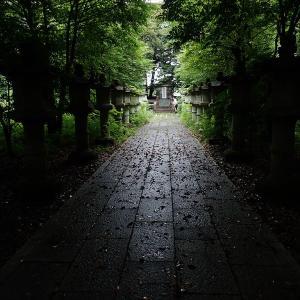 7月18日墓所公開レポート