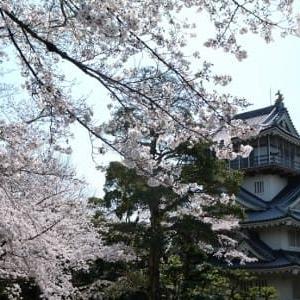 ケチをつける人々・・4/2(木)晴れ ・・桜を見に・・