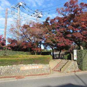 平林寺堀の紅葉・2020