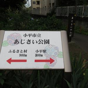 小平市立あじさい公園・2021