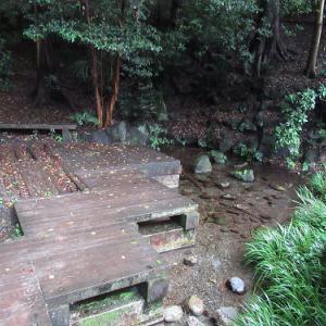 竹山公園の湧水~落合川