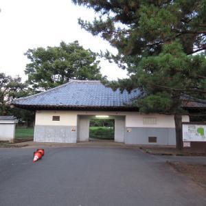 田んぼのある公園~光が丘・秋の陽公園 2021夏