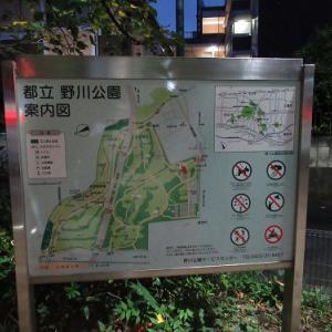 早朝ポタリング~野川公園
