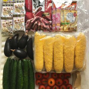 家庭菜園の野菜