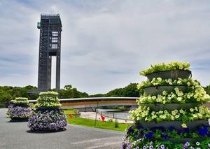 2019 浜名湖ガーデンパーク  11