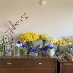 花いっぱいのテーブル  4月の料理教室 part 1