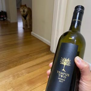 柴犬ソムリエ、赤ワイン対決の判定はいかに?