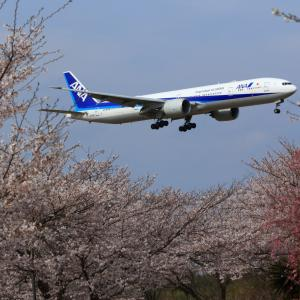 全日本空輸 ボーイング777-300ER JA735Aフォーエバー