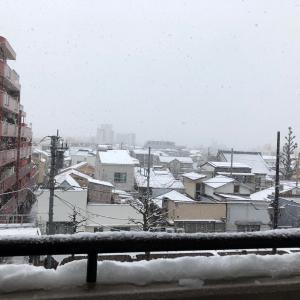 大雪が降りました おうちカレー