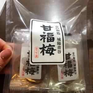 京都女一人旅 出張ついでに観光  終