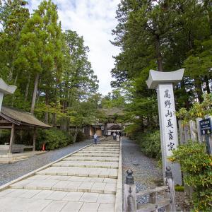 標高800m!文化財の宝庫高野山で森林浴