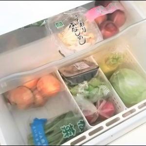 食品を「全出し」するときの注意点【冷蔵考】