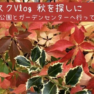 【バスクVlog】 秋を探しに自然公園とガーデンセンターに行ってみた