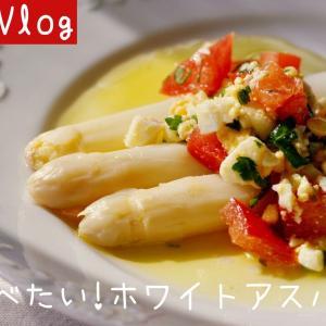 春に食べたい!ホワイトアスパラガス|おうちごはん|カモの親子【バスクVlog】