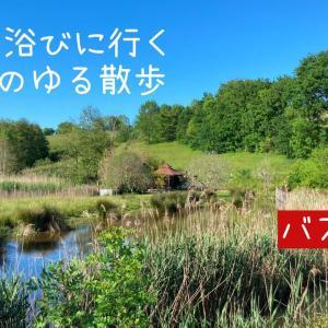 【バスクVlog】 新緑を浴びに行く午後のゆる散歩