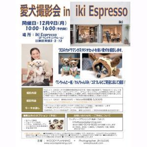 【清澄白河】iki Espresso 2階にて12/9 愛犬撮影会あり