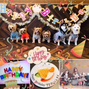 【東新宿】愛犬ヴィレッジでお誕生日会
