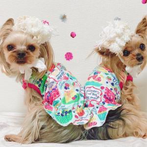 【春コーデ】ベリーパーティーなワンピ&ヘッドドレス