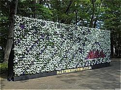 花のまちフェスティバル