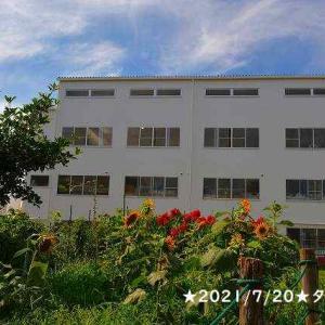 A.L.C.貝塚学院、2021年の夏
