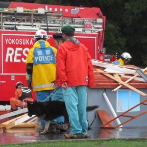 災害時BCP訓練