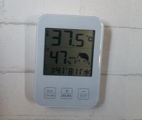 『猛暑の中、モンちゃんのお部屋で巣ごもり生活のお父さん』の巻♪
