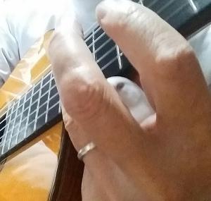 『モンちゃん、ギター練習中の朝寝~かくれんぼ』の巻♪