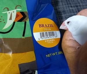 『ブラジルのコーヒー、移民切手、音楽(ボサノヴァ、サンバ)』の巻♪