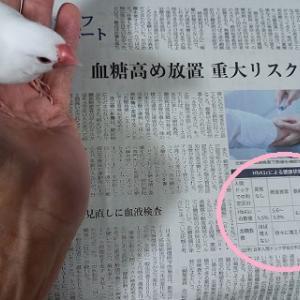 『糖尿病のリスクと向き合う~今年もサンマの漁獲減』の巻♪