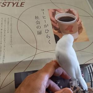 『コーヒーの魅力♡』の巻♪