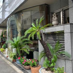 【四ツ橋カフェ】 ランチ『佐賀牛A5ランクハンバーグ』 大阪市西区新町