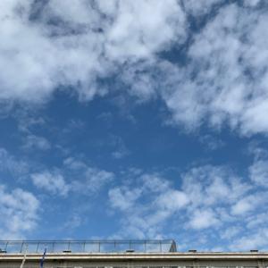 吉田小学校運動会 ムラカミユタカ氏の絵の複製のパネル張り (成人式振袖前撮り)
