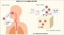 高橋教授のコロナ情報:曝露と感染は違う。