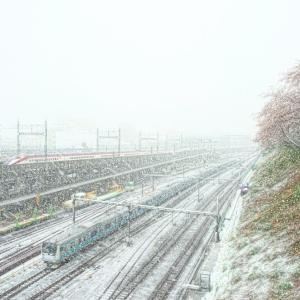 東京・春の雪景色