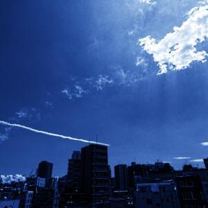 フェニックス・・・ブルーインパルス東京飛行
