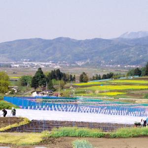 信州飯山・農作業風景