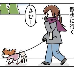 犬の散歩とマフラーと