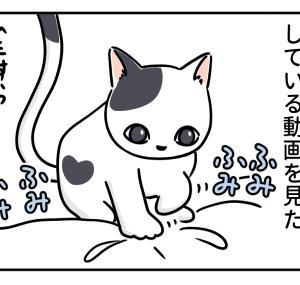 猫のふみふみ、犬のほりほり