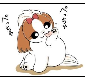 体幹が弱い犬
