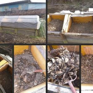 堆肥の切り替えと保存野菜の収穫・取り出しをしました!