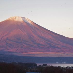山中湖周辺に行ってきました 富士山・山中湖編!