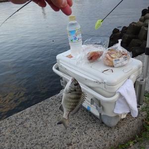 10月6日の釣行♪