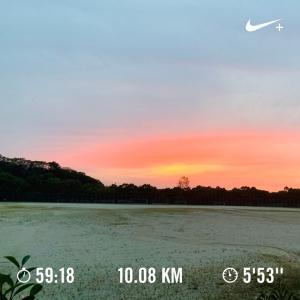 ただ走るだけではなく、自然を感じて走ると気持ち良い