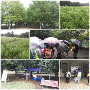 10/14 昭和記念公園ウォークラリー