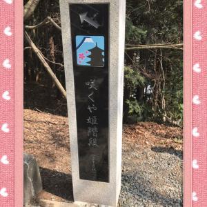 新倉山浅間神社&公園&忠霊塔へ…花見🌸