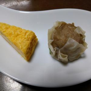 リハーサルと魔法使いの香菜豆腐