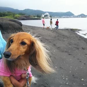 早い夏休みで千葉館山へ