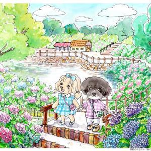 プレゼントコーナー!!「季節のイラスト ひまわり」締め切りは8月24日です!
