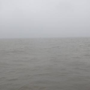 6月14日の琵琶湖 雨のやみ間に…